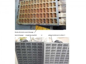 moule-alimentaire-nettoyage-cryogénique